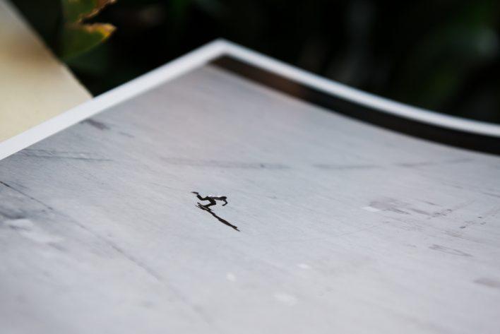odprints2