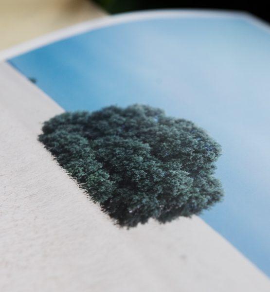 odprints4
