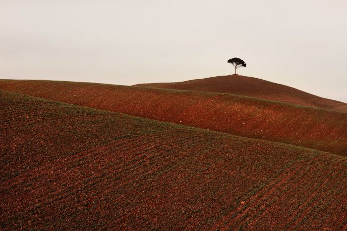 Italian landscape 05