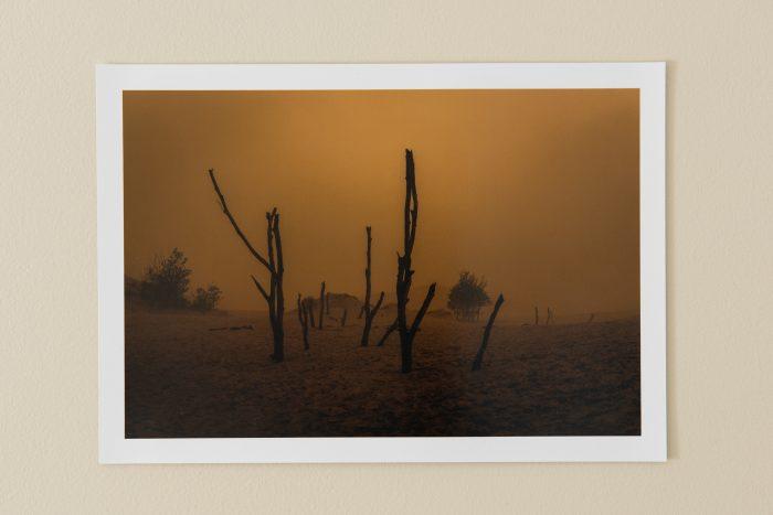 Limbo (Print Pic)