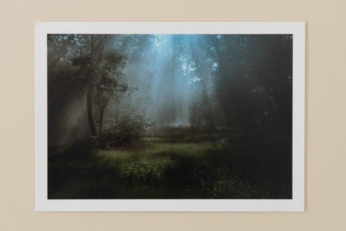 Magic Streams (Print Pic)