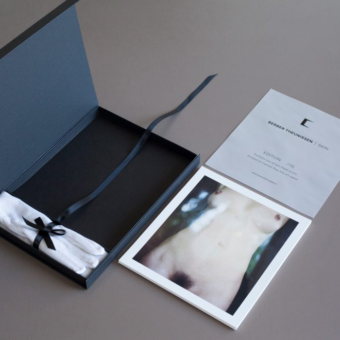 Skin portfolio box