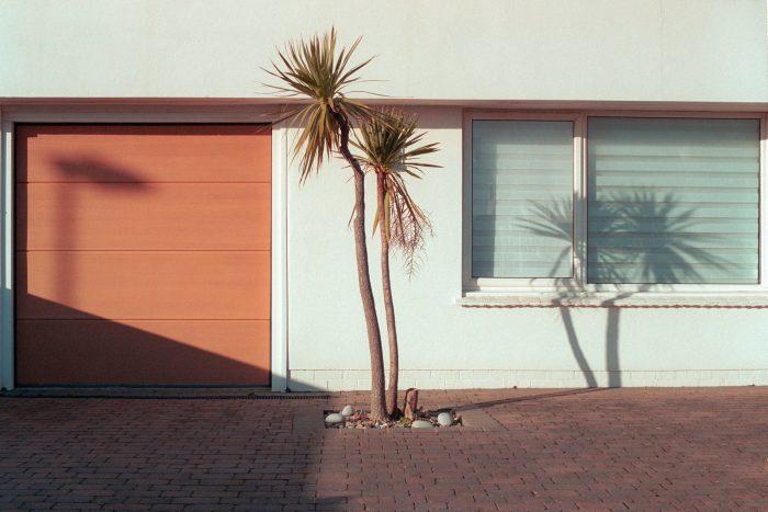 Palm Sprigs