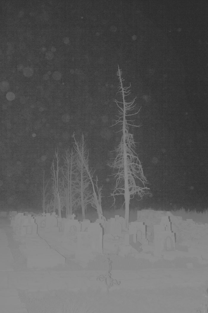 Dead Silence, Carhue, 2017