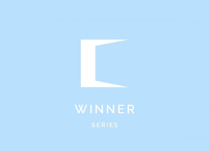 Winner-(series)
