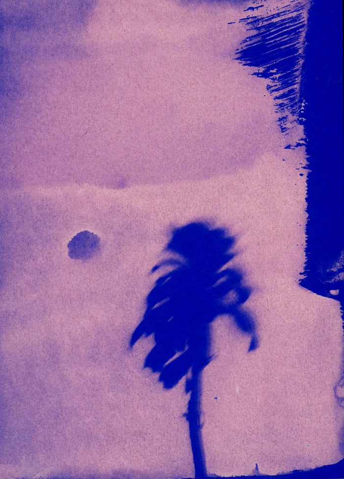 Little Palm II by Sayako Sugawara
